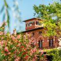 Villa Puccini - 15 / 20